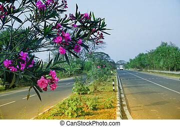 national, inde, autoroute