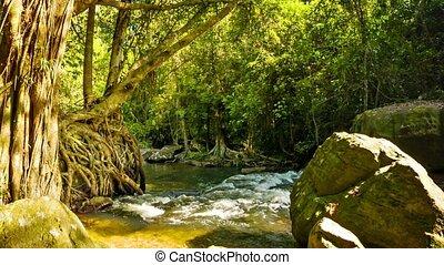national, park., kulen, cambodscha, phnom