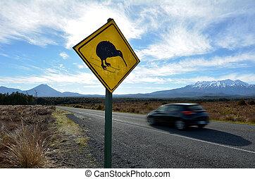 Car drive through Tongariro National Park