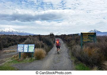 Tongariro Alpine Crossing - NATIONAL PARK, NZ - NOV 25 2014:...