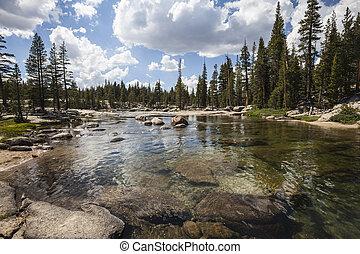 national, rivière, parc, toulumne, yosemite