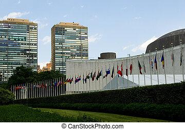 nations unies, dans, séance