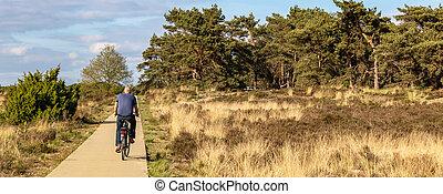 Tourist cycling along picnic bench at Veluwe National Park, Gelderland, Netherland