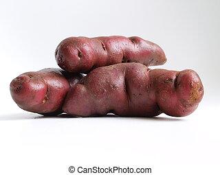 Native variety of potato tubers - Pile of potato tubers of ...