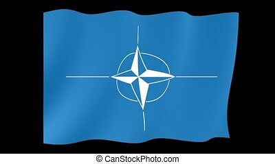 Nato flag. Waving - Flag animation Background deleted with...