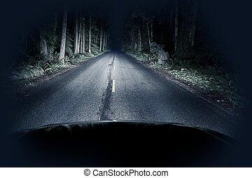 natt, drivande, genom, skog