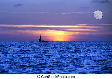 natt, måne, ocean, resa, lätt, segelbåt