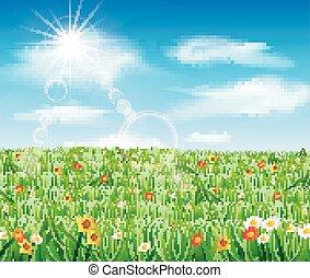 natur, hintergrund, gras, grün