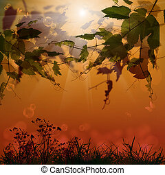 natur, jahreszeit, hintergrund