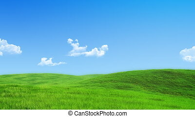 natur, sammlung, -, grüne wiese