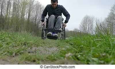 natura, carrozzella, spostamento, passeggiata, invalido,...