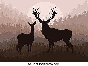natura, cervo, illustrazione, pioggia, selvatico, animato, paesaggio