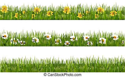 natura, daisies., sfondi, tre, denti leone, verde, vector., ...