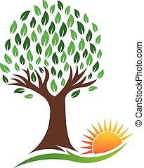 natura, drzewo, i, wibrujący, słońce, wektor, logo