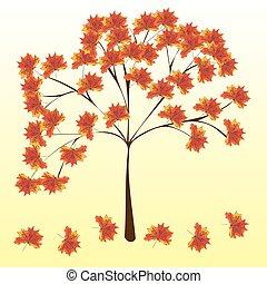 natura, foglie, albero, autunno, fondo, acero