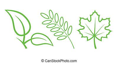 natura, foglie, -, icons., 3, parte, verde