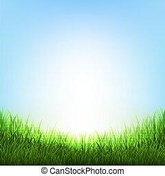 natura, fondo, con, erba