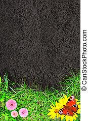 natura, fondo, con, erba verde, e, suolo