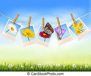 natura, fondo, con, foto, con, fiori, e, butterfly., vettore, illustration.
