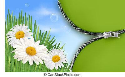 natura, fondo, con, primavera, flowe
