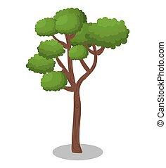 natura, foresta albero, icona