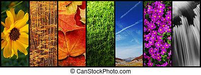 natura, fotomontaggio