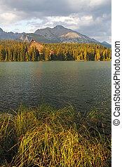 natura, góra, scena, z, piękny, jezioro, w, slovakia, tatra, -, strbske, pleso