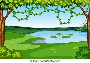 natura, jezioro, prospekt