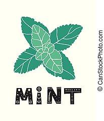 natura, mentolo, plant., sano, erbaceo, aroma., menta, leafs., vettore, verde, menta verde, leaf., fresco