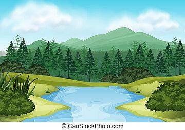natura, potok, prospekt