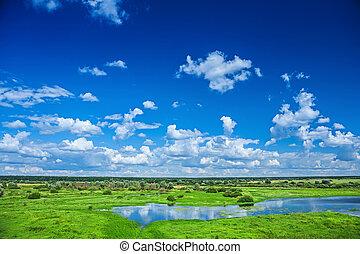 natura, vista, su, campo, e, cielo