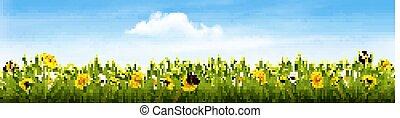 natura, wiosna, vector., butterflies., kwiaty, chorągiew, krajobraz