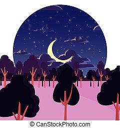 natural, árvores, lua, floresta, estrelas, noturna, paisagem