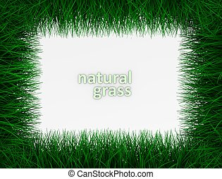 3d illustration, top view grass frame with copy-space.