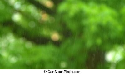 natural background. Close-up of a raindrop on a blurry...