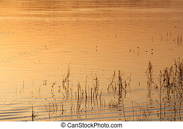 Natural background - water at sunset