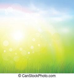 Natural background  - Natural sunny background.
