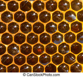 Natural background of honeycomb with honey and spectra