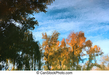 Natural background, reflected in water tree in the park.