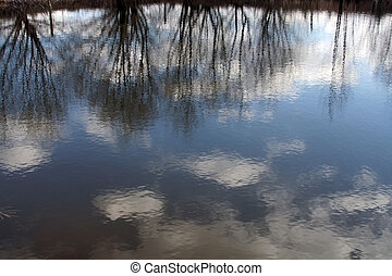 Natural background - reflections in the water