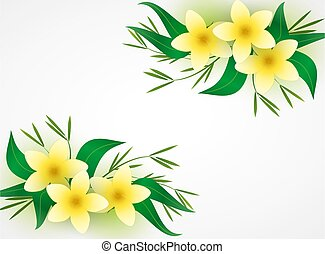 Vector illustration flowers. Natural background with place for text, the spa still life