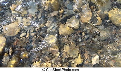 Natural background. Water flows over stones at the bottom of a shallow river in the mountains. Nature backdrop, natural background, environmental protection.