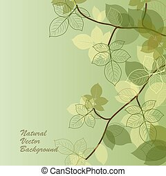 Natural background with green leaves.