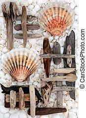 Natural Beach Art - Scallop shell, driftwood and seashell...