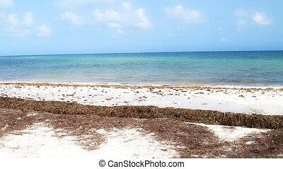 Natural Beach Florida Keys