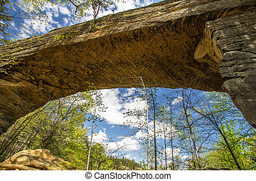 Natural Bridge In Kentucky