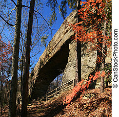 natural bridge rock arch in Natural Bridge State Park in ...