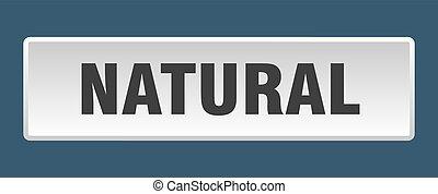 natural button. natural square white push button