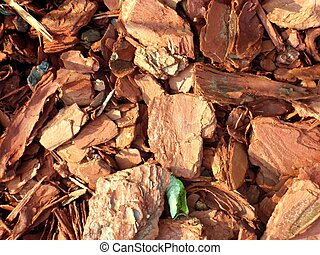 Natural Cedar Chips Background