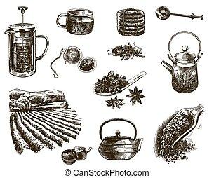 natural, chá, esboços